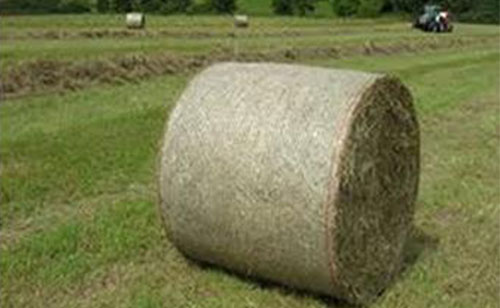 Agriculture grass bale wrapping